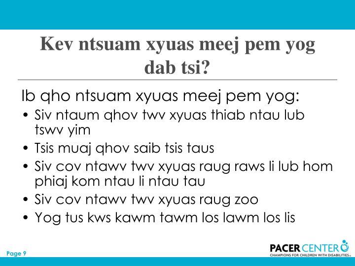 Kev ntsuam xyuas meej pem yog dab tsi?