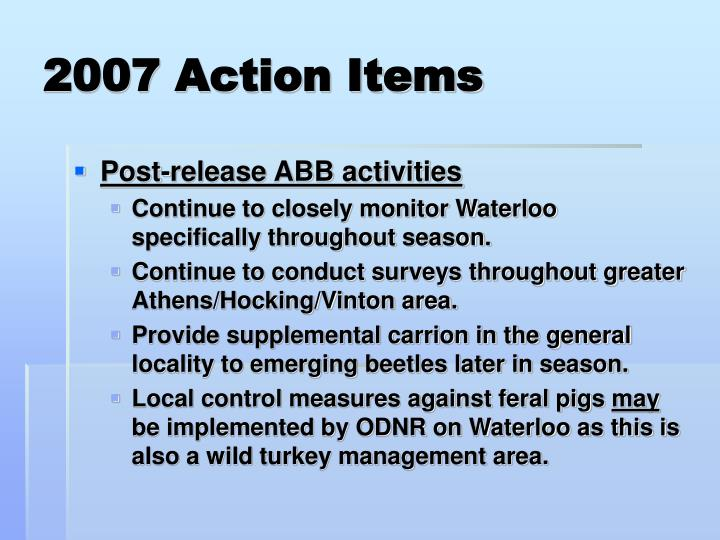 2007 Action Items