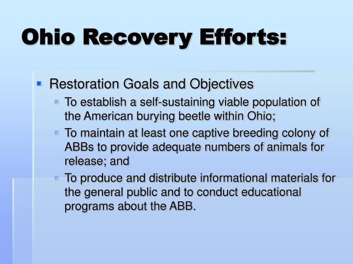 Ohio Recovery Efforts: