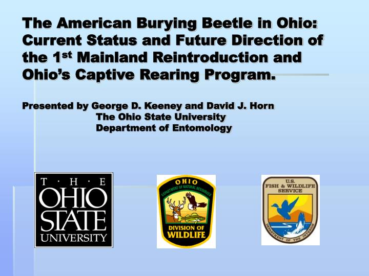 The American Burying Beetle in Ohio: Current Status and Future Direction of the 1