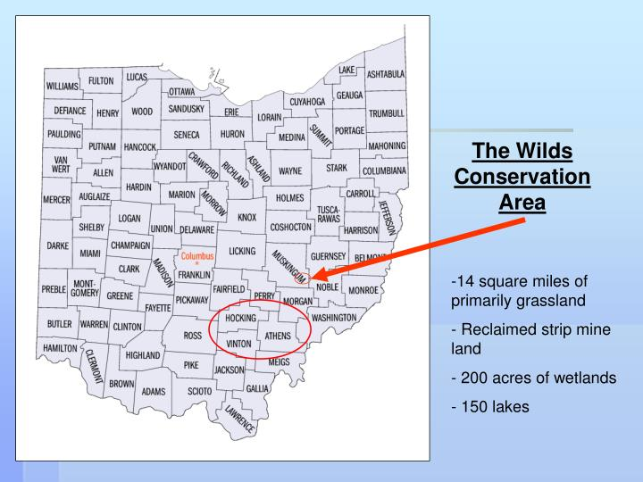 The Wilds Conservation