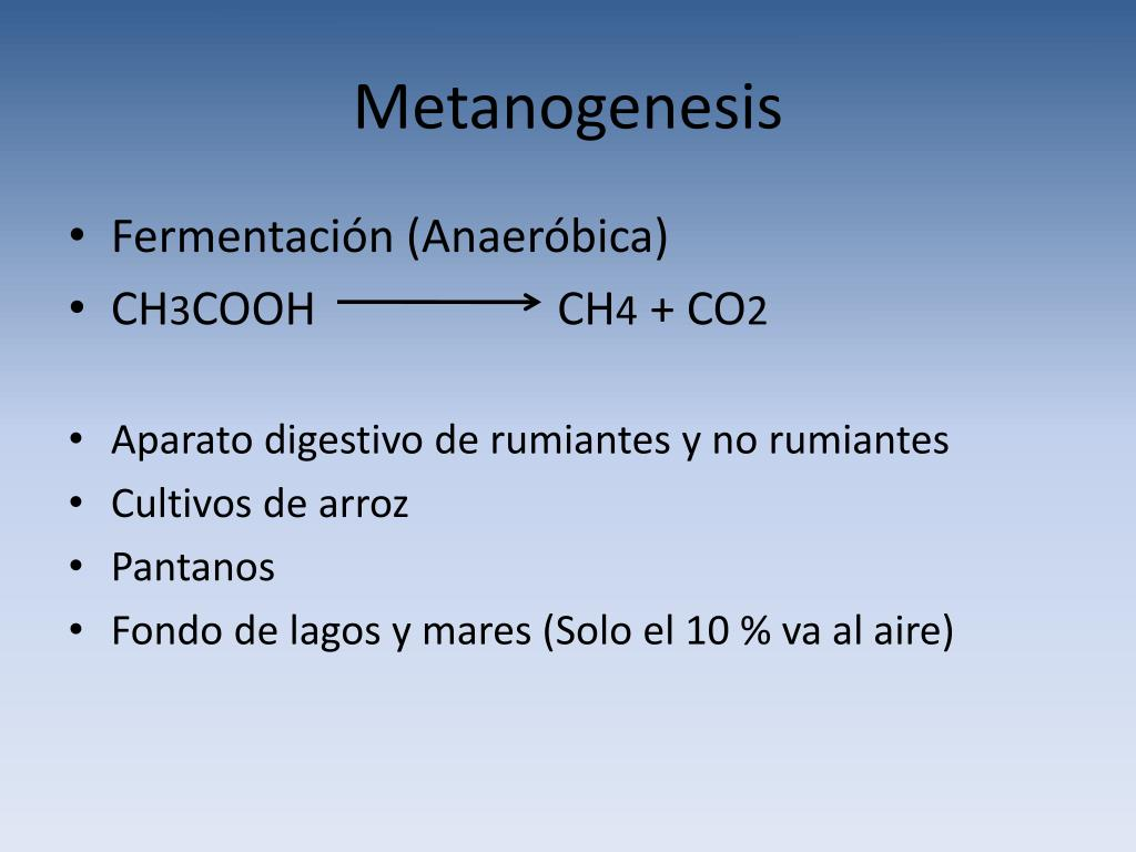 Metanogenesis