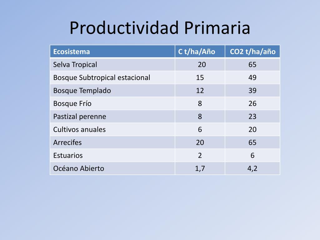 Productividad Primaria