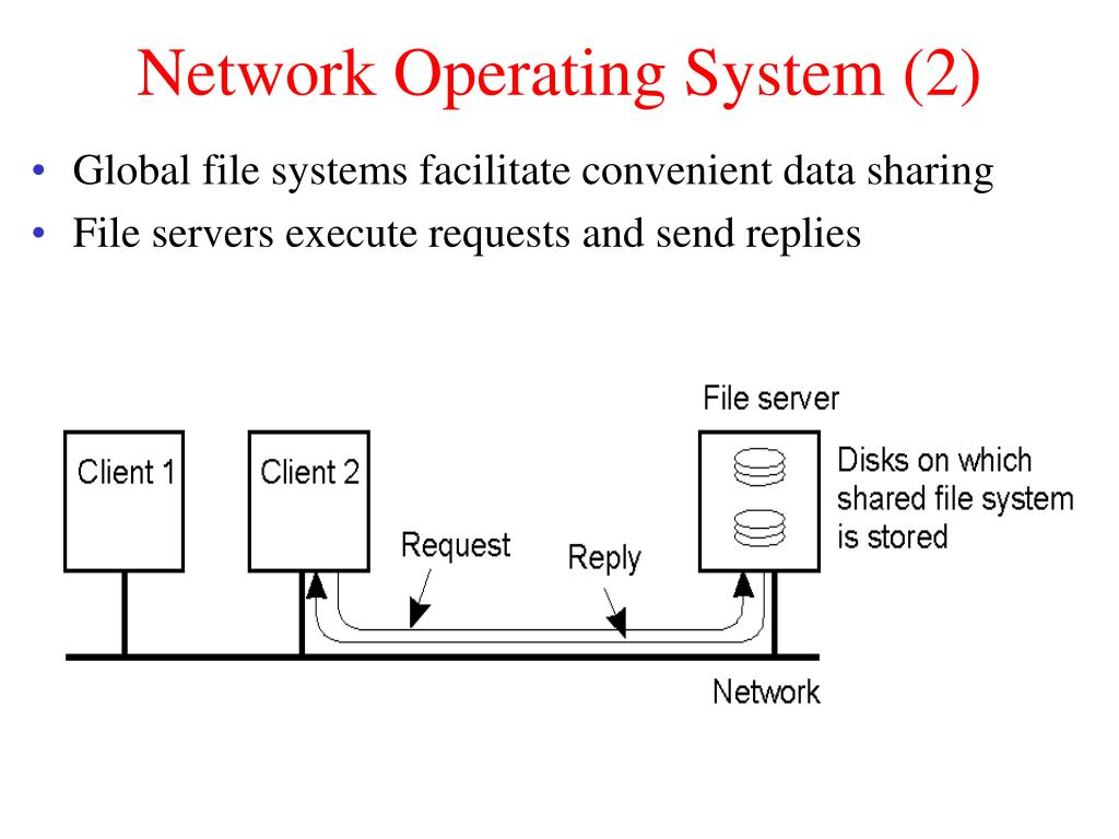 Network Operating System (2)