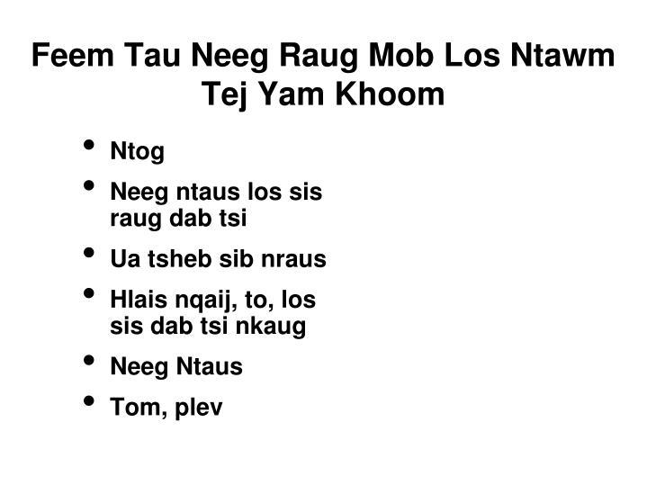 Feem Tau Neeg Raug Mob Los Ntawm Tej Yam Khoom