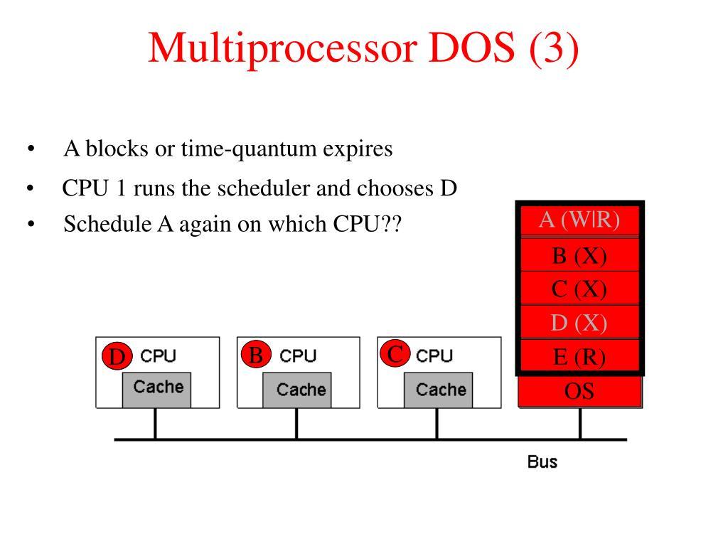 Multiprocessor DOS (3)