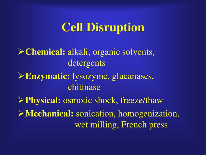Cell Disruption