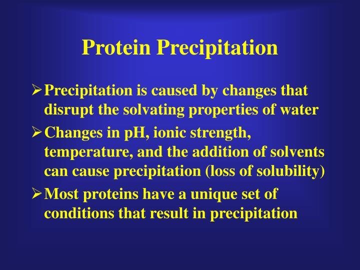 Protein Precipitation