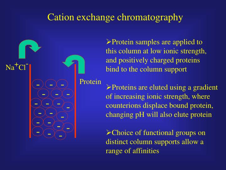 Cation exchange chromatography