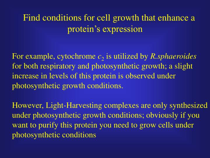 Find conditions for cell growth that enhance a