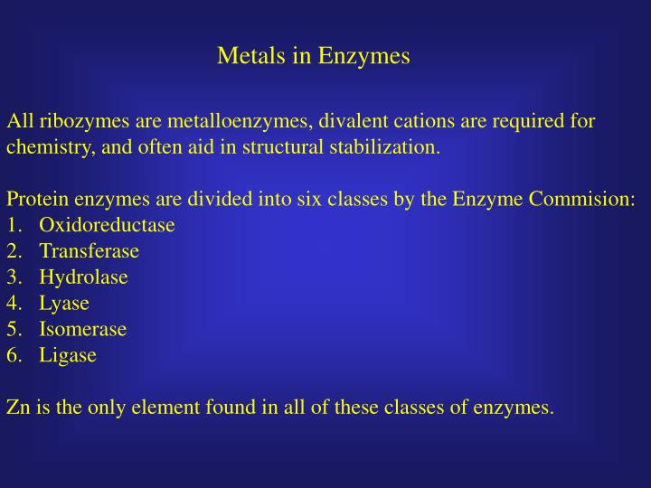 Metals in Enzymes