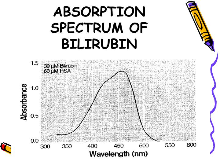ABSORPTION SPECTRUM OF BILIRUBIN