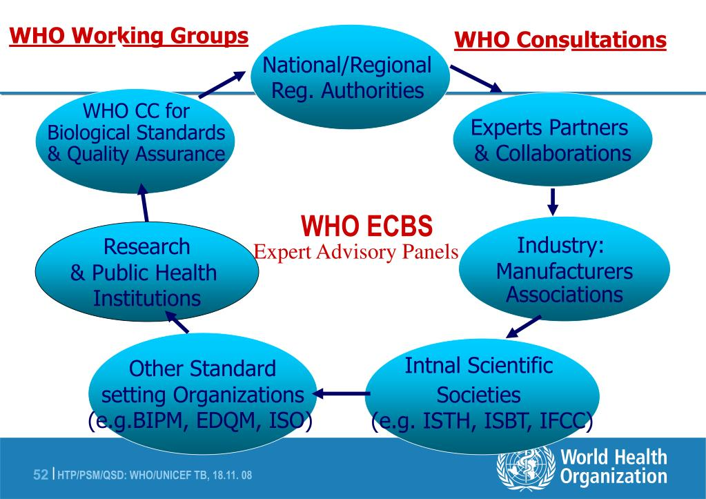 WHO Working Groups