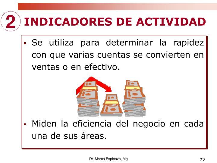 INDICADORES DE ACTIVIDAD