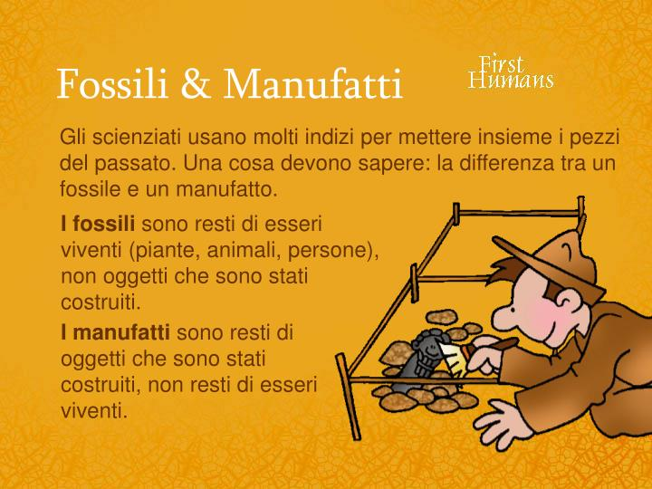 Fossili & Manufatti