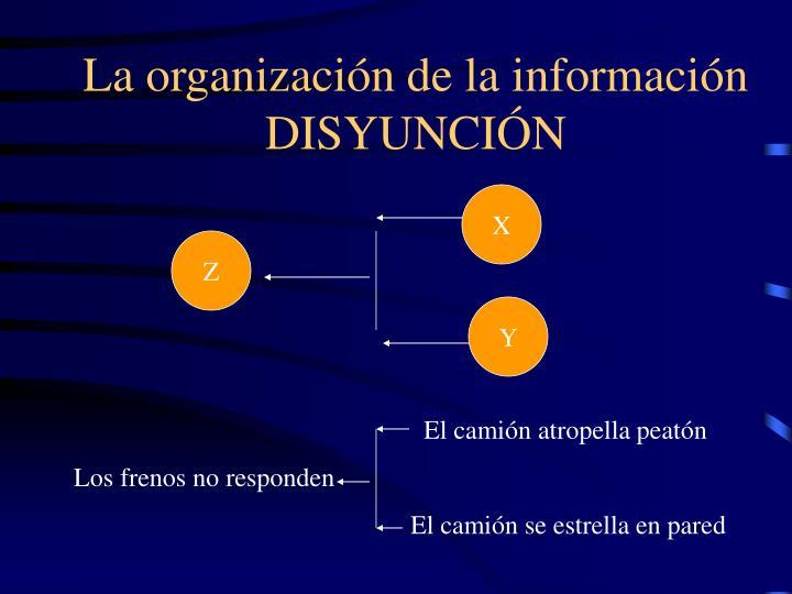 La organización de la información