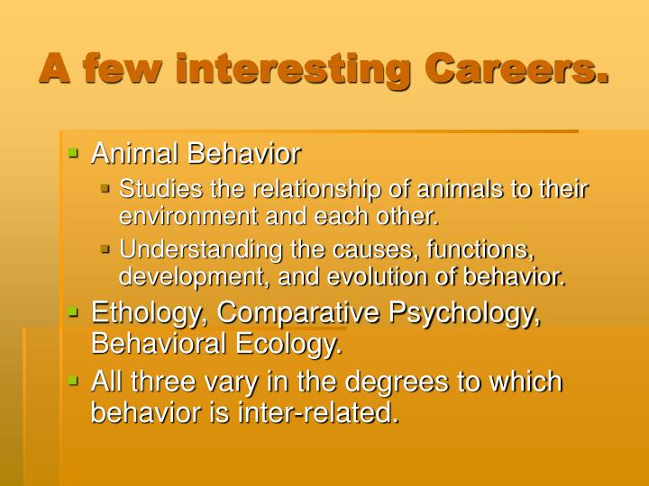 A few interesting Careers.