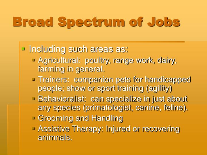 Broad spectrum of jobs