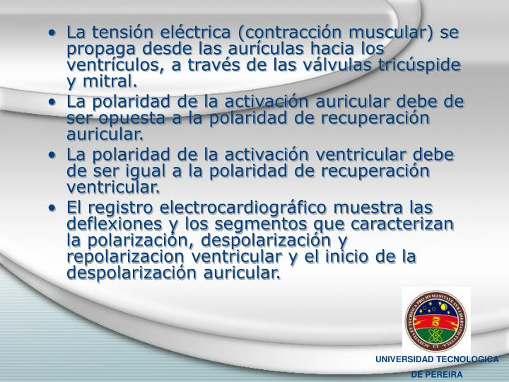 La tensión eléctrica (contracción muscular) se propaga desde las aurículas hacia los ventrículos, a través de las válvulas tricúspide y mitral.