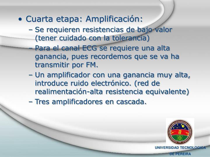 Cuarta etapa: Amplificación: