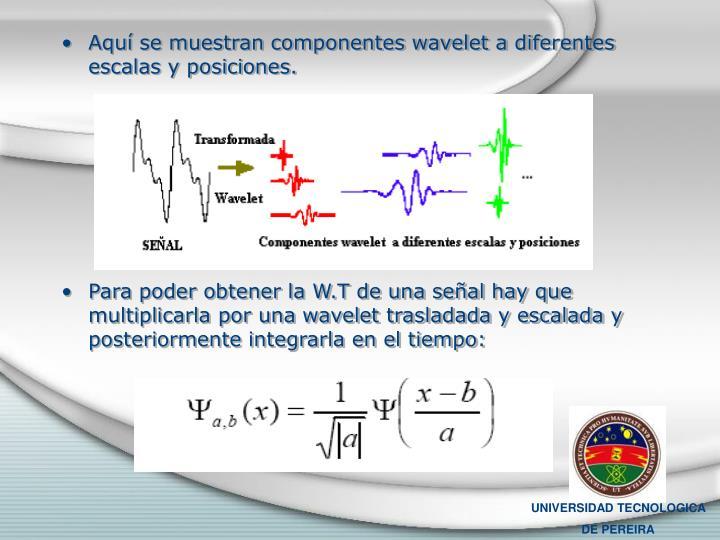 Aquí se muestran componentes wavelet a diferentes escalas y posiciones.