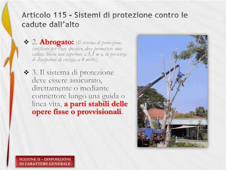 Articolo 115 - Sistemi di protezione contro le cadute dall'alto