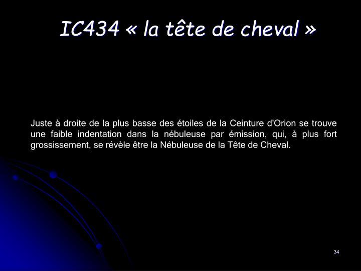 IC434 «la tête de cheval»