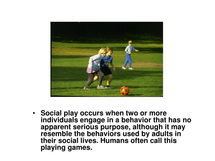 Social play occurs when two or more individuals engage in a behavior that has no apparent serious purpose, although it may resemble the behaviors used by adults in their social lives. Humans often call this playing games.