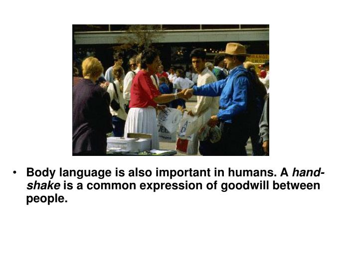 Body language is also important in humans. A