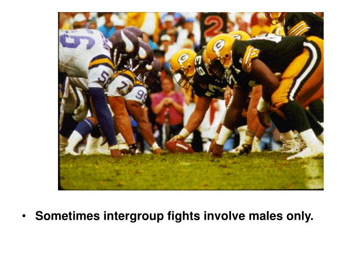 Sometimes intergroup fights involve males only.