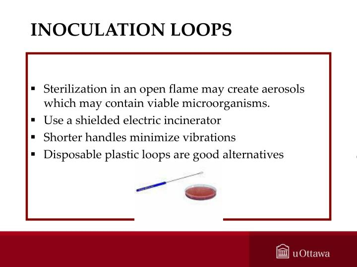 INOCULATION LOOPS
