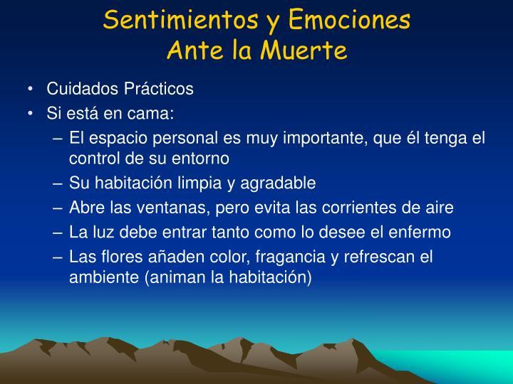Sentimientos y Emociones