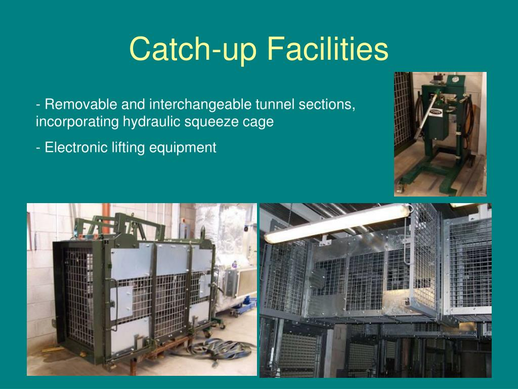 Catch-up Facilities