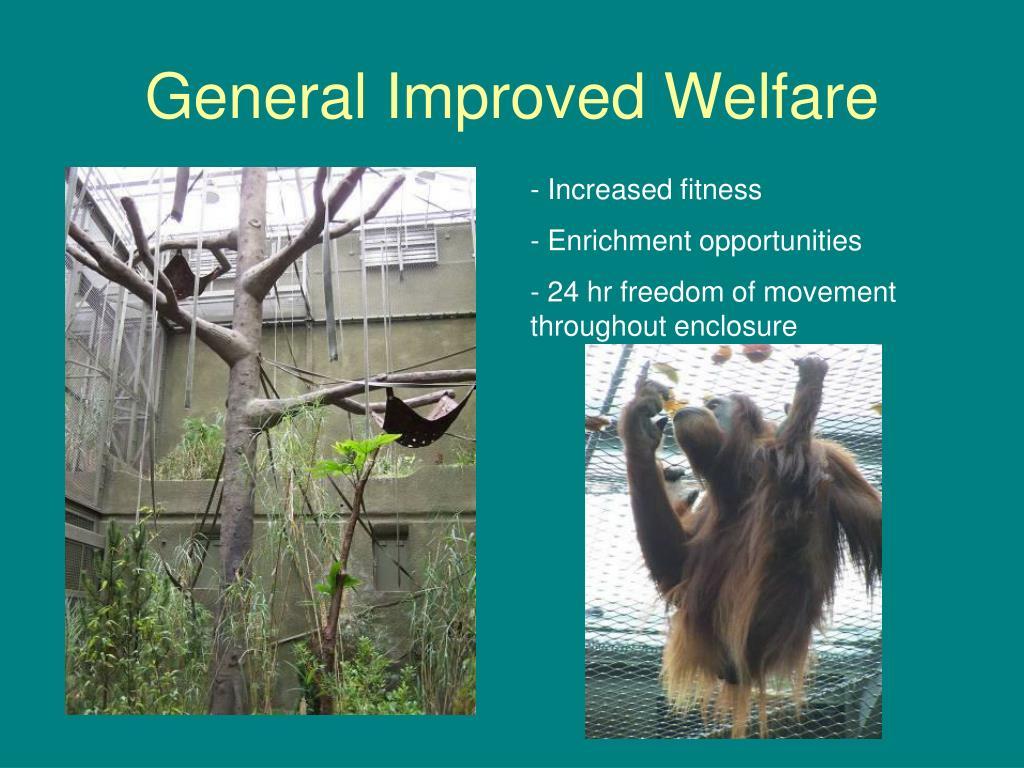General Improved Welfare