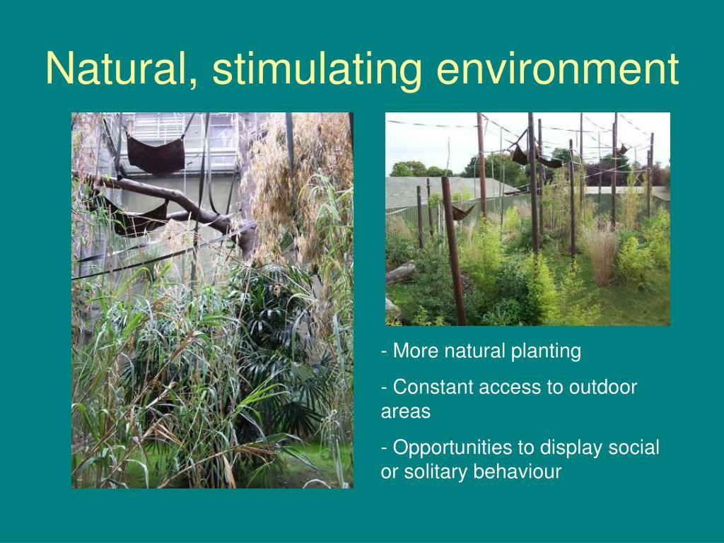 Natural, stimulating environment