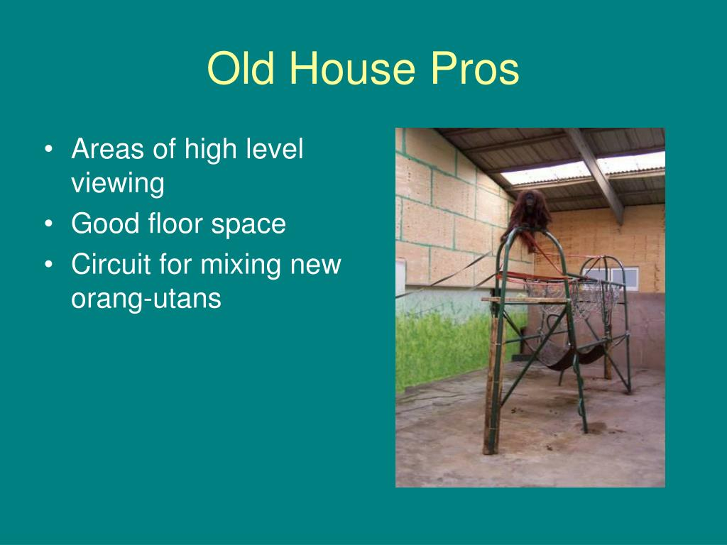 Old House Pros