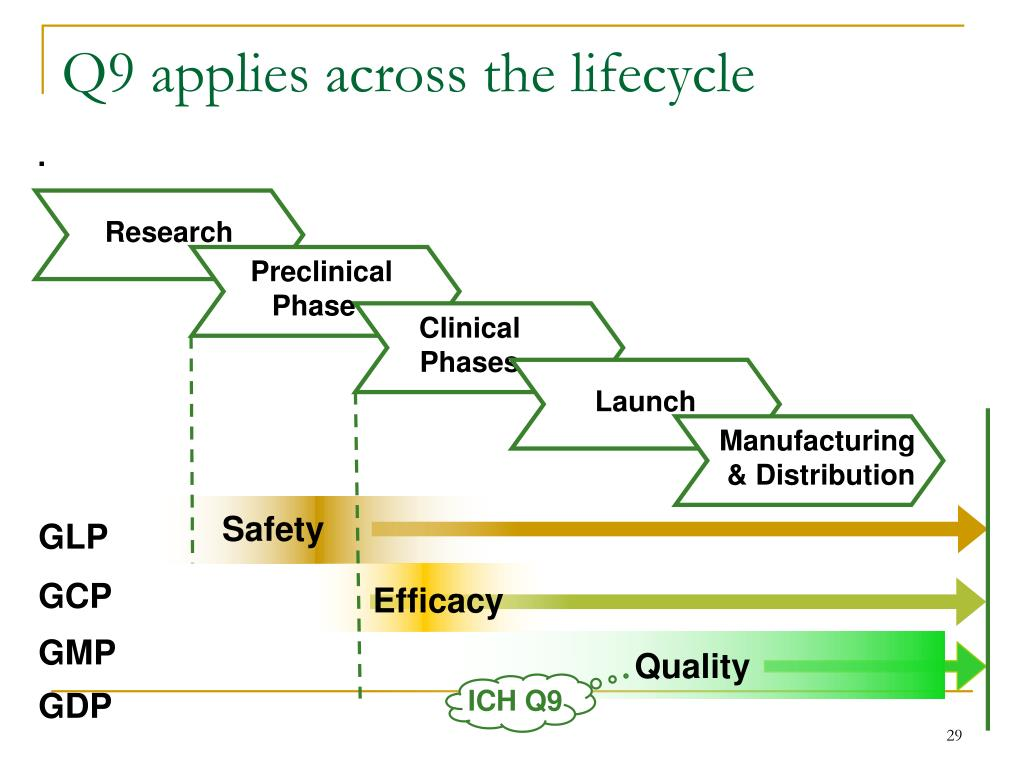 Q9 applies across the lifecycle