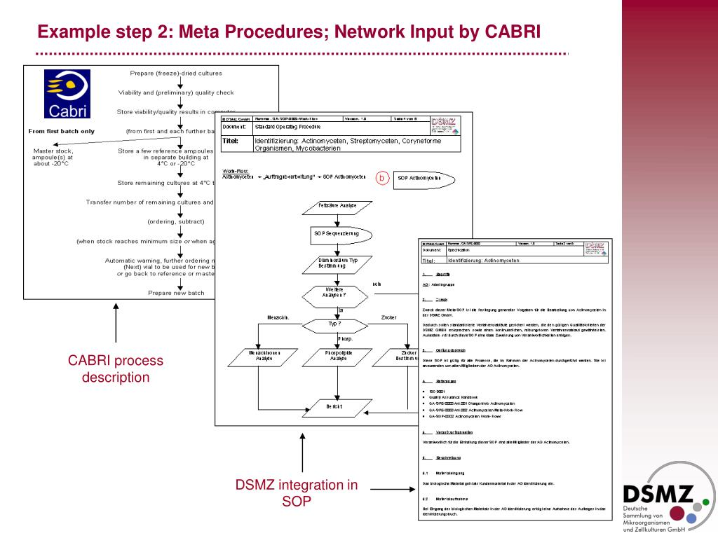 Example step 2: Meta Procedures; Network Input by CABRI