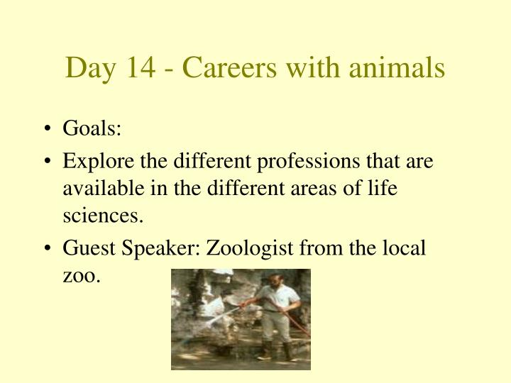 Day 14 - Careers with animals