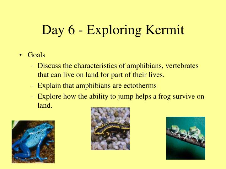 Day 6 - Exploring Kermit