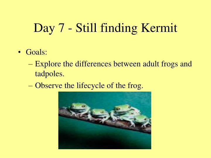 Day 7 - Still finding Kermit