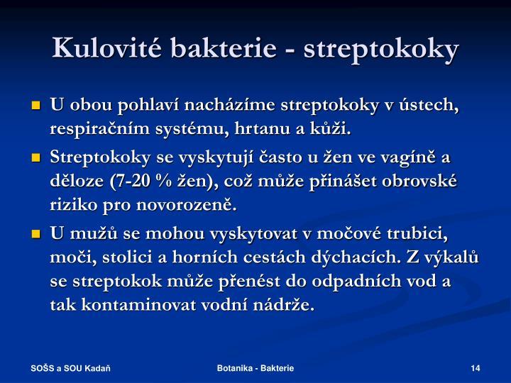 Kulovité bakterie - streptokoky