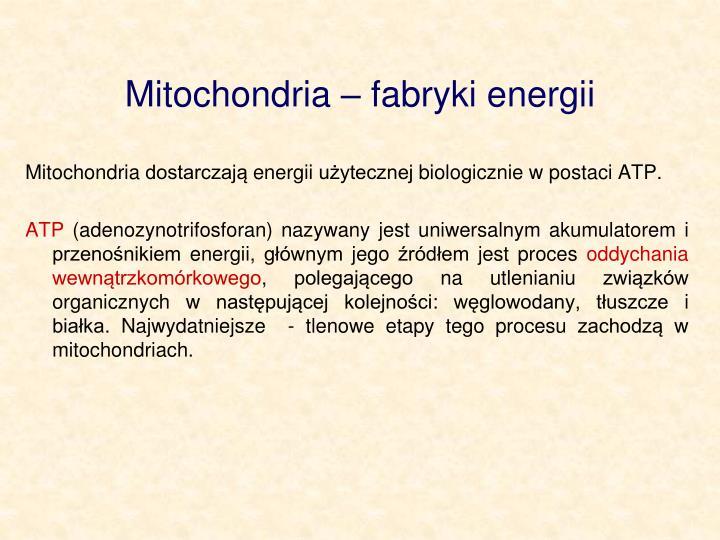 Mitochondria  fabryki energii