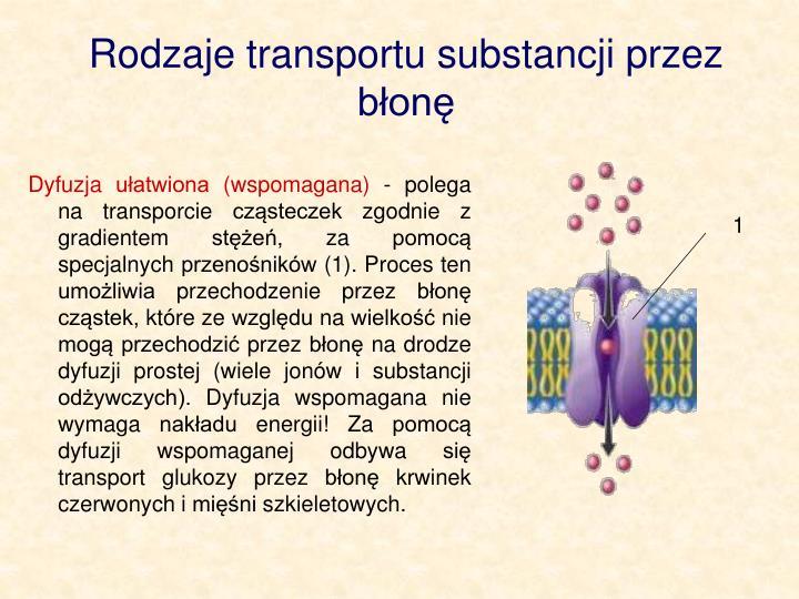 Rodzaje transportu substancji przez bon
