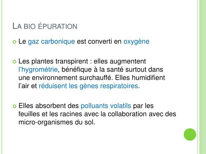 La bio épuration