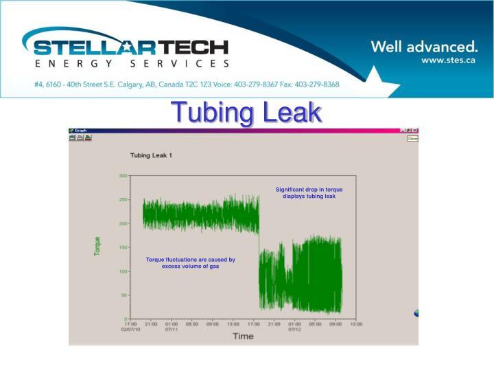 Tubing Leak