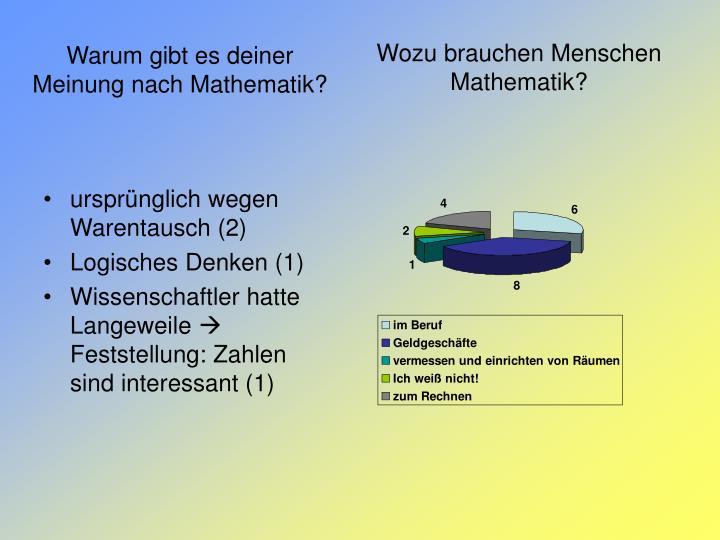 Wozu brauchen Menschen Mathematik?
