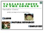 variable costs in the long run