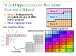 h 264 opportunities for parallelism slice and mb level