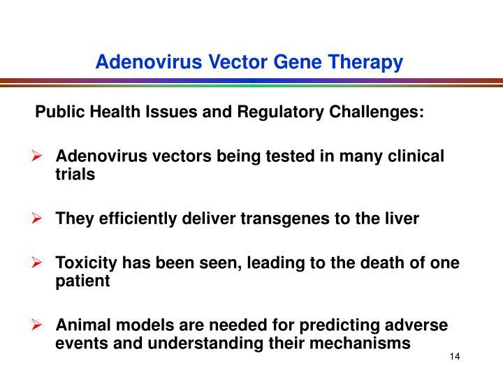 Adenovirus Vector Gene Therapy